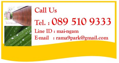 contact0895109333